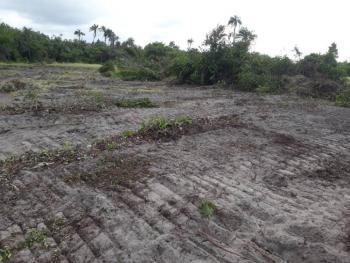 Estate Land, Livewell Estate, Ogogoro, Ibeju Lekki, Lagos, Mixed-use Land for Sale