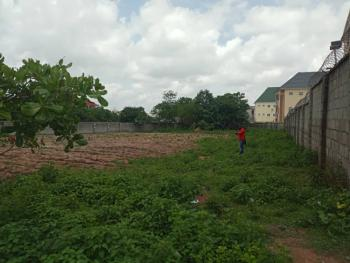 1589sqm Residential Land in a Very Strategic Location....hot!!!, Close to Next Cash and Carry, Mabuchi, Abuja, Residential Land for Sale