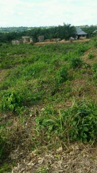 Land Measuring 50 By 100, Ekiadolo Community By Benin-lagos Express Way, Benin City., Okada, Ovia North-east, Edo, Mixed-use Land for Sale