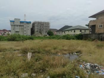 Bare Land for Commercial Purposes, Facing Express Way Near Lbs, Lekki, Lagos, Commercial Land for Sale