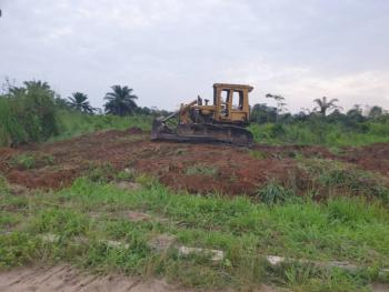 Cheapest Genuine Farm Land, Ogere 45mins From Berger, Sagamu, Ogun, Commercial Land for Sale