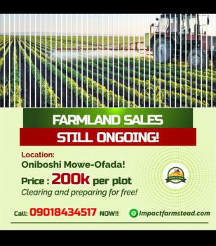 Affordable Green Land for Investment in Farming, Orimerunmu, Ibafo, Ogun, Mixed-use Land for Sale