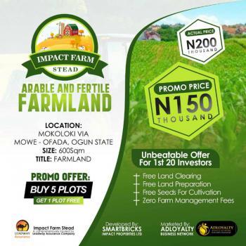 Farm Land Now Available with Free Development, Mokoloki, Mowe Ofada, Ogun, Commercial Land for Sale