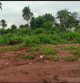 Farmland per Acres, Kobape, Obafemi Owode, Ogun, Mixed-use Land for Sale