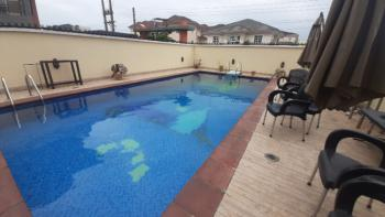 Spacious Studio Bq with Swimming Pool - 24hours Power, Oniru, Victoria Island (vi), Lagos, Self Contained (single Rooms) for Rent
