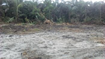 Verified Waterfront Dry Land, Directly Facing The Peaceful Lekki Lagoon., Folu Ise, Ibeju Lekki, Lagos, Mixed-use Land for Sale