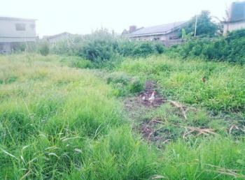 Super Affordable Land, Ikate Elegushi, Lekki, Lagos, Residential Land for Sale