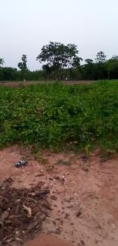 Diamond Homes Estate, After Koza Church Guzape, Guzape District, Abuja, Residential Land for Sale