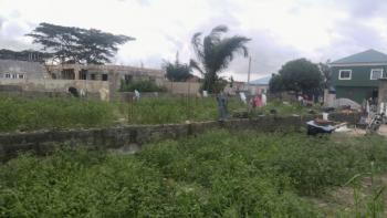 1 Plot of Land with a Solid Foundation, Royal Palm Estate, Badore, Ajah, Lagos, Residential Land for Sale