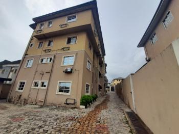 Exotic and Tastefully Finished 3 Bedroom Flat, River Valley Estate Ojodu Berger, Ojodu, Lagos, Flat for Rent