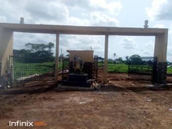 Affordable Residential Lands, Alexander City Estate Behind Goshen Estate, Independence Layout, Enugu, Enugu, Residential Land for Sale