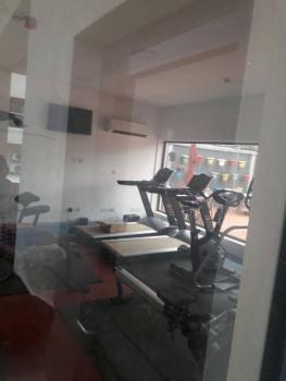 One Bedroom, Ikoyi, Lagos, Flat for Rent
