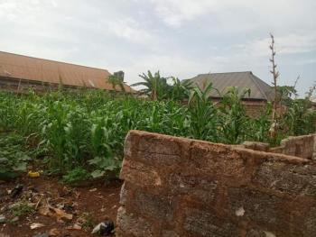 Propertyarena, Alihame Agbor, Ika North East, Delta, Residential Land for Sale