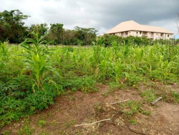 2 and Half Plots of Land, Ohaji/egbema, Imo, Residential Land for Sale