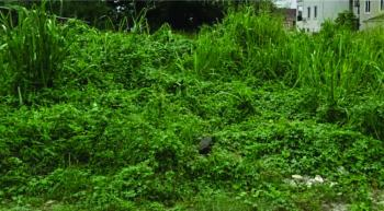 20 Plots of Land, Along Orchid Road, Close to Bueni Vista, Orchid, Ikota, Lekki, Lagos, Residential Land for Sale