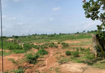 1 Hectare Industrial Land with Approval for Warehouse, Off Cecc/railway Station Road, Idu Industrial, Abuja, Industrial Land for Sale