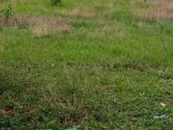 a Residential Land Size of 2,330sqm, Katampe Extension, Katampe, Abuja, Residential Land for Sale