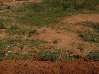a Residential Land Measuring 1,800sqm, Katampe Extension, Katampe, Abuja, Residential Land for Sale