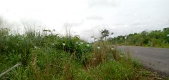 1360 Hectares of Land with C of O, Ilile, Ohaji/egbema, Imo, Mixed-use Land for Sale