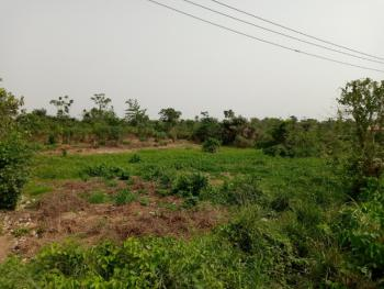 1.5 Acres of Virgin Land, Molatori Off Nbc Road, Ibeshe, Ikorodu, Lagos, Industrial Land for Sale