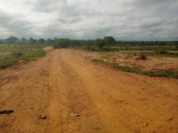 9 Hectares Farm Land with a Good Access Road Is Available, Kuzhipi, After Luvu Masaka Area 1, Karu Lga, Karu, Nasarawa, Mixed-use Land for Sale