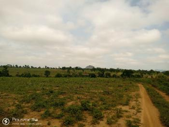 30 Hectares Farm Land Is a Secured Location with Good Access Road, Kuzhipi, After Luvu Masaka Area 1, Karu Lga, Karu, Nasarawa, Mixed-use Land for Sale
