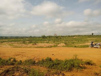 5 Hectares Farm Land Directly Facing The Major Road in a Secured Location, Karu, Nasarawa, Mixed-use Land for Sale