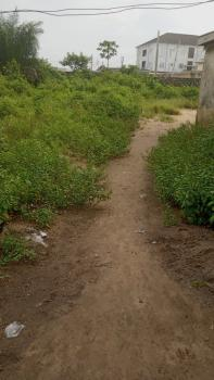 C of O, Opic, Isheri North, Lagos, Mixed-use Land for Sale