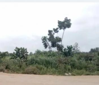 Two Plots of Land, Alasia, Close to Ibogun (objs House) Coker Bus Stop, Agbado, Ifo, Ogun, Mixed-use Land for Sale