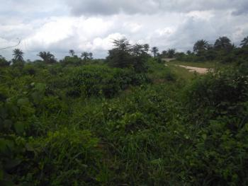 4000 Plots with C of O Located Strategically, Isiokpo Ikwerre Rivers State, Ikwerre, Rivers, Mixed-use Land for Sale