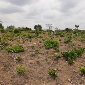 Land, Odo-egiri,evergreen Estate, Epe, Lagos, Mixed-use Land for Sale
