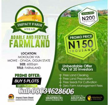 Arable Farm Land, Mokoloki Via Mowe Ofada, Owode, Obafemi Owode, Ogun, Commercial Land for Sale
