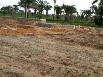 Plots of Land in a Serene Location, Sacred Heart Estate, Asaba, Delta, Mixed-use Land for Sale