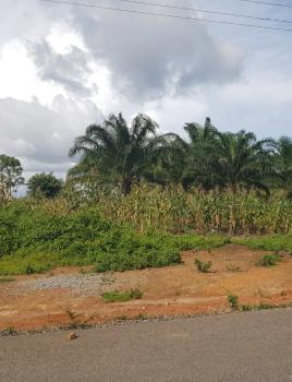 3.6 Hectares Land on Tarred Road with C of O, Wasa, After Mechanic Village, Apo, Abuja, Residential Land for Sale