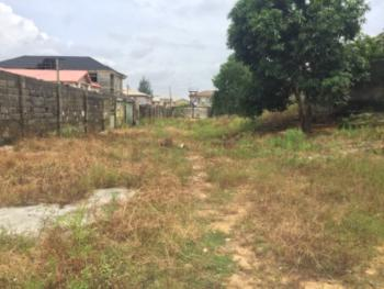 1038sqm of Dry Land with Governors Consent., Thomas Estate, Ajah, Lagos, Residential Land for Sale