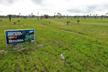 Affordable Dry Land for Investment in The New State with High Roi, Ode-omi, Off La Campaigne Tropicana, Champion Seed Estate, Okun Imedu, Ibeju Lekki, Lagos, Residential Land for Sale