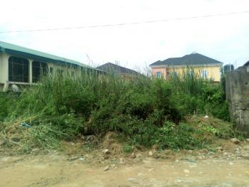 a Virgin Half Plot of Land in an Estate with Cofo, Beach Estate, After Daily Manner, Ori-oke, Ogudu, Lagos, Residential Land for Sale