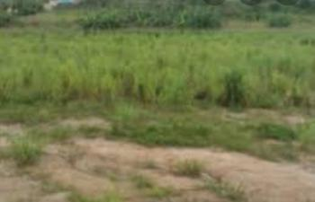 25 Plots of Land, Around Sachs Table Water Company, Orlu, Imo, Mixed-use Land for Sale