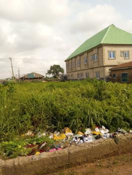 2 Plots Together, Ewegbemi Bus Stop, Ekoro Road, Abule Egba, Agege, Lagos, Commercial Land for Sale