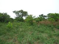 100 Hectares of Abuja Farm Land with C of O for Sale!, Paiko-kore Farm Land Layout, Gwagwalada, Abuja, Commercial Land for Sale