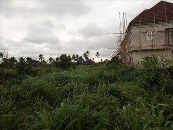 Receipt and Deed of Assignment, Eziobodo in Umuezeala Community, Owerri West, Imo, Land for Sale
