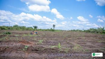 Plot of Land, Oyin Gardens, Orile-igbehin in Obafemi Owode Local Government, Sango Ota, Ogun, Residential Land for Rent