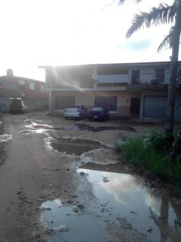 a Detached House on 3 Plot, Okonlanwon Ajayi Street Off Adelabu, Adelabu, Surulere, Lagos, Detached Duplex for Rent