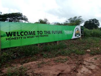 Farm Land, Mokoloki, Mowe Ofada, Ogun, Commercial Land for Sale