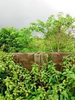 Family Receipt and Conveyance, Oke Agbo Town Gberigbe, Gberigbe, Ikorodu, Lagos, Mixed-use Land for Sale