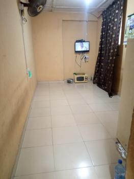 Nice Miniflat, Off Ayo-alabi, Oke-ira, Ogba, Ikeja, Lagos, Mini Flat for Rent