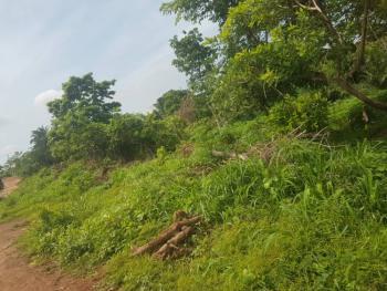 Beautiful Land, One and Half Plot, Royal Estate, Ibagwa Nike, Enugu, Enugu, Mixed-use Land for Sale