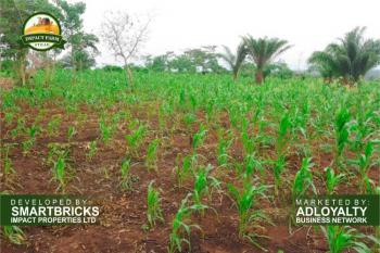 Plots of Land Available at Promo Price, Mokoloki, Mowe Ofada, Ogun, Commercial Land for Sale