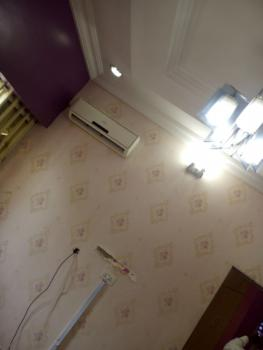 Newly Renovated Luxury 1 Bedroom Fully Finished and Fully Serviced., Zone 6, Wuse, Abuja, Mini Flat for Rent