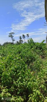 Buy and Build Dry Land, Behind Cooplag Garden Estate Orchid Road Eleganza, Lafiaji, Lekki, Lagos, Residential Land for Sale